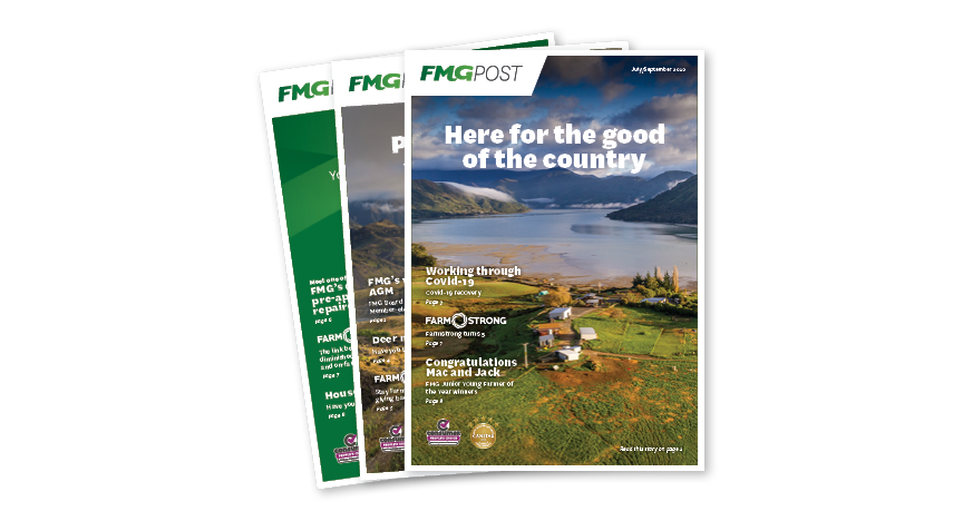 Three FMG Post publications fanned out on display
